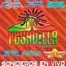 Sonideros En Vivo thumbnail