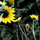 Sunflower thumbnail