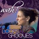 Loops N Grooves thumbnail