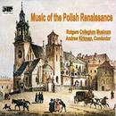 Music Of The Polish Renaissance thumbnail