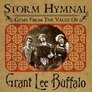 Storm Hymnal : Gems From The Vault Of Grant Lee Buffalo (US version) thumbnail