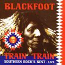 Train Train: Southern Rock's Best - Live thumbnail
