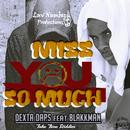 Miss You So Much (Single) thumbnail