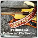 Volume 14 - Followin' The Feelin' thumbnail