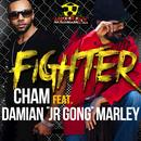 Fighter (Single) thumbnail