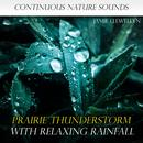 Nature Sounds: Prairie Thunderstorm with Relaxing Rainfall thumbnail
