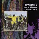Tommy James & The Shondells: Anthology thumbnail