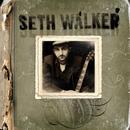 Seth Walker thumbnail