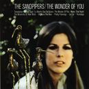 The Wonder Of You thumbnail
