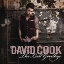 The Last Goodbye (Radio Single) thumbnail