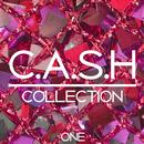C.A.S.H. Collection, Vol. 1 - 100% Dance Music Anthems thumbnail