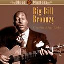 Greatest Blues Licks thumbnail