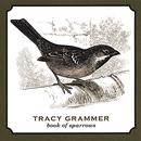 Book Of Sparrows thumbnail
