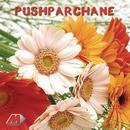 Pushparchane Vol. 3 thumbnail