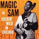 Rockin' Wild In Chicago thumbnail