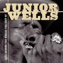Live Around The World: The Best Of Junior Wells thumbnail