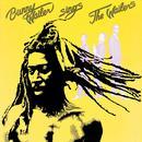 Sings The Wailers thumbnail