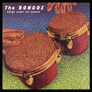 Drums Along The Hudson (Special Edition) thumbnail