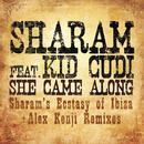 She Came Along (Remixes) thumbnail