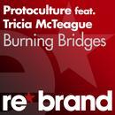 Burning Bridges thumbnail