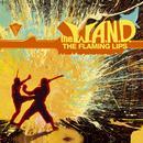 The W.A.N.D. (U.S. DMD Maxi) thumbnail