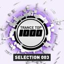 Trance Top 1000 Selection, Vol. 3 (Extended Versions) thumbnail