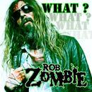 What? (Radio Single) thumbnail