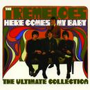 Here Comes My Baby : The Ultimate Collection thumbnail