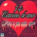 14 Canciones De Amar - Para Ti Que Sabes Amar thumbnail