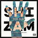 Shizam - EP thumbnail