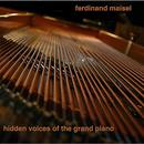 Hidden Voices Of The Grand Piano thumbnail
