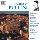The Best Of Puccini thumbnail