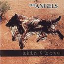 Skin & Bone thumbnail
