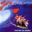Surfing In Siberia thumbnail