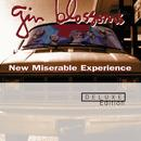 New Miserable Experience (Deluxe Edition) thumbnail