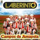 Campos De Amapola thumbnail
