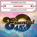 I'm Gonna Love You / Goodbye Little Star (Digital 45) thumbnail