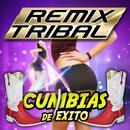 Remix Tribal - Cumbias De Exitos thumbnail