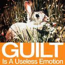 Guilt Is A Useless Emotion (US DMD - DJ version) thumbnail