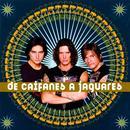 De Caifanes A Jaguares thumbnail