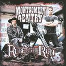 Rebels On The Run thumbnail