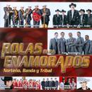 Rolas Para Enamorados: Norteno, Banda Y Tribal thumbnail