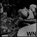 WN (Single) thumbnail