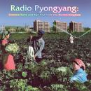 Radio Pyongyang: Commie Funk And Agit Pop From The Hermit Kingdom thumbnail