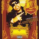 Pimpalation (Explicit) thumbnail