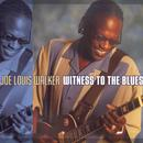 Witness To The Blues thumbnail