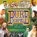 Pure Gospel: 10 Top Choirs - Vol. 4 thumbnail
