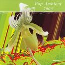Pop Ambient 2006 thumbnail