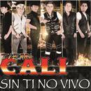 Sin Ti No Vivo (Single) thumbnail