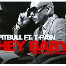 Planet Pit Hey Baby (Drop It To The Floor)  (Radio Single)  thumbnail